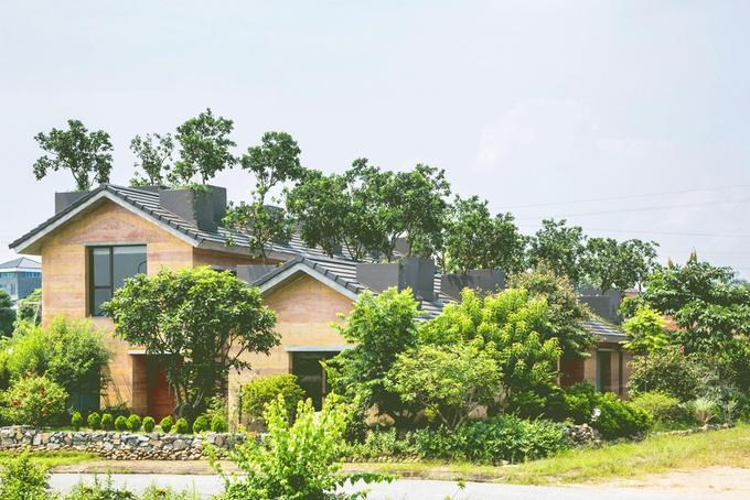 Ngôi nhà có kiến trúc độc đáo với tường bằng đất và trồng cây trên mái.
