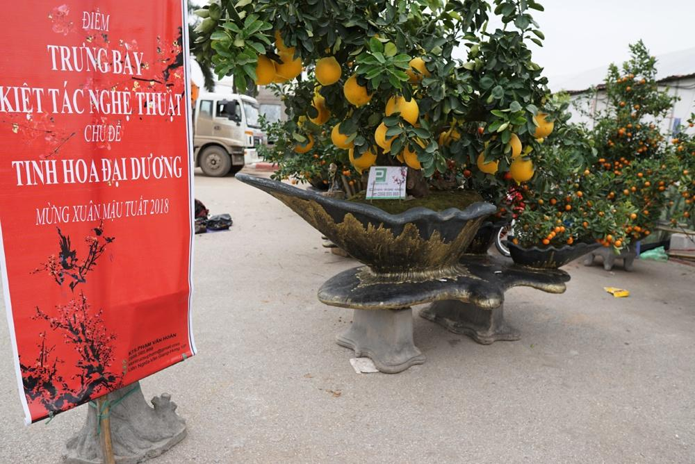 Vài ngày qua, người dân Thủ đô đi qua khu vực hội chợ ở sân vận động Mỹ Đình không khỏi trầm trồ ngạc nhiên trước những siêu phẩm quất cảnh mang tên Tinh hoa đại dương đang được trưng bày tại đây.