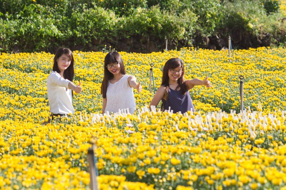 Nhiều bạn trẻ nô nức về đây chụp ảnh cùng hoa. (Ảnh: diadiemthamquan.com)