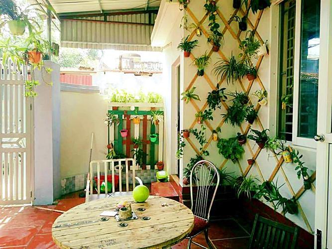 160 m2 diện tích còn lại được chị tận dùng làm sân vườn nên không gian căn nhà cấp 4 của vợ chồng chị Lan vô cùng thoáng mát, gần gũi với thiên nhiên.