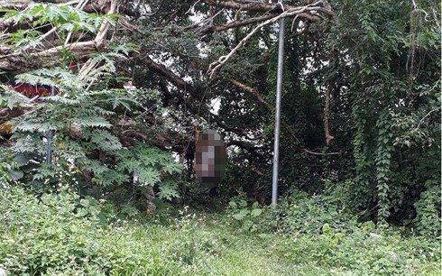 Hiện trường nơi phát hiện ông K. treo cổ tự tử