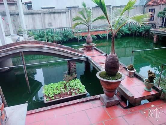 Ngôi nhà của Nhiên có hồ.