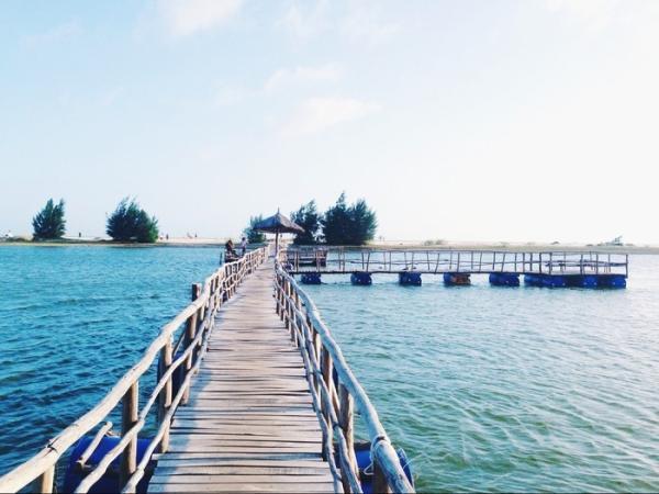 Cây cầu mộc – Điểm sống ảo bậc nhất rất được giới trẻ ưa chuộng. (Nguồn: vntrip.vn)