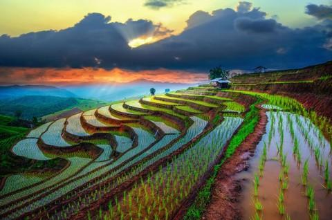 Image%20result%20for%20beautiful%20viet%20nam%20sunset