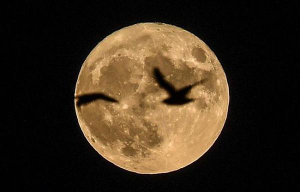 Một siêu trăng từng xuất hiện được chụp ở Cộng hòa Czech - ảnh: MIRROR