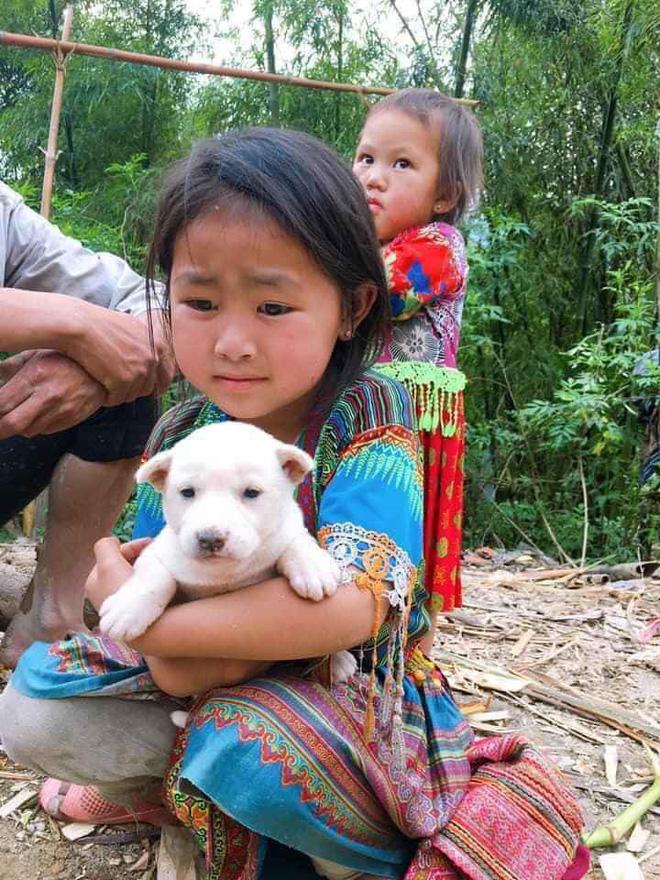 Cô bé ôm chặt, nhất quyết không muốn rời xa con chó của mình.