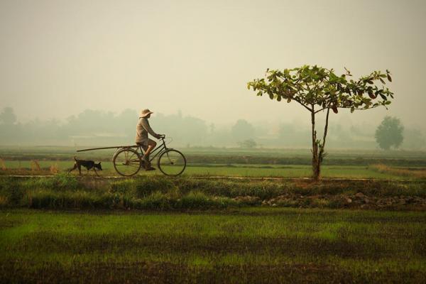 Những hình ảnh làng quê luôn in đậm trong tâm trí của mỗi người.