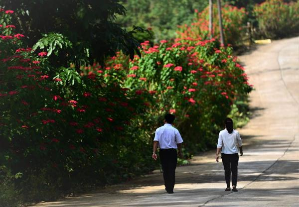 Hoa mọc dại trên khắp các nẻo đường-ảnh Nguyễn Vũ Hậu