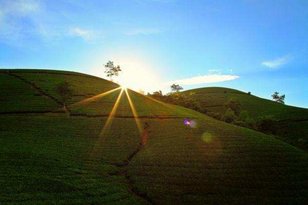 Mảnh đất Phú Thọ mang vẻ đẹp của vùng sơn cưới- ảnh Tuấn Tài